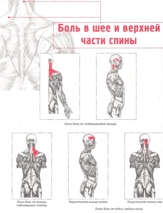 Народные средства от боли в голове при остеохондрозе