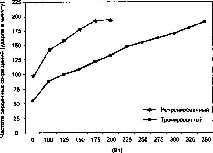 физическая нагрузка после увеличения груди