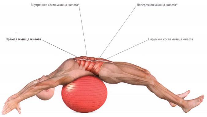 Растяжка мышц живота